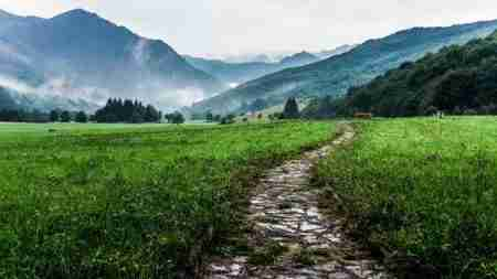 path - what is a premise